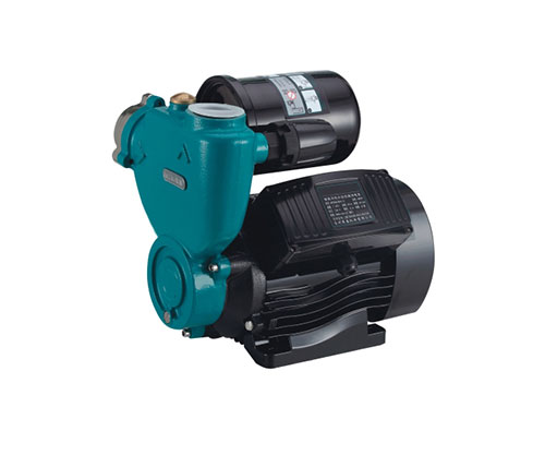Self-priming Peripheral Pumps 005