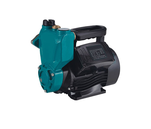 Self-priming Peripheral Pumps  001